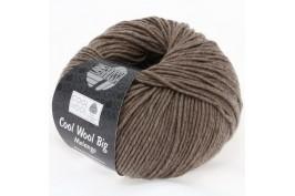 Cool Wool Big taupe 315