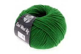 Cool Wool Big 939 groen