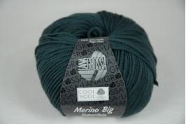 Cool Wool Big 904 hulst groen