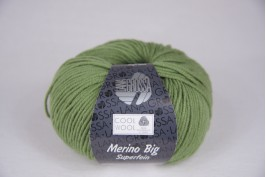 Cool Wool Big varen groen 909